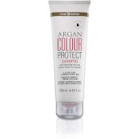 Hair-Xpertise Argan Colour Protect Hair Shampoo - 250ml (0464)  / HAIR CARE 73