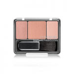 Covergirl Instant Cheekbones Contouring Blush (240 Sophisticated Sable) R140