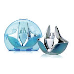 Silver Light (Ladies 100ml EDP) Linn Young (FRLY018) (9706)